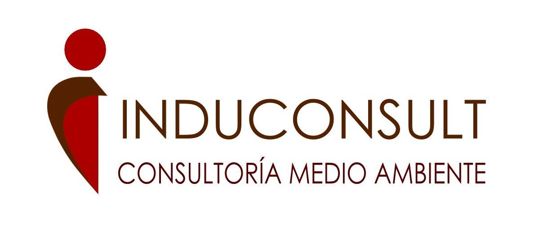 Consultoría Induconsult